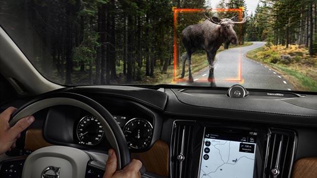 Ich glaub mich knutscht ein Elch? Lieber nicht. City Safety im Volvo S90 ermöglicht die Erkennung großer Tiere bei Tag und auch in der Nacht.